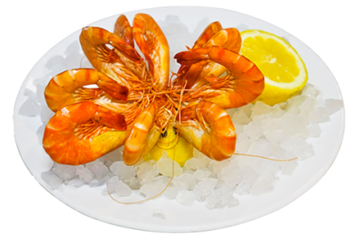 crevettes-roses